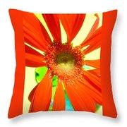 2505c1-019 Throw Pillow