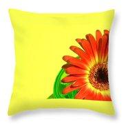 2510c-003 Throw Pillow