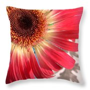 2558c1-001 Throw Pillow