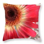 2558c1-010 Throw Pillow
