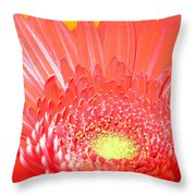 2560-001 Throw Pillow