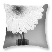 2841-001 Throw Pillow