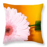 2841 Throw Pillow