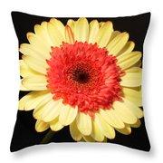 2973-001 Throw Pillow