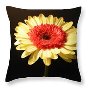 2984 Throw Pillow