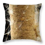 A Cattail Typha Latifolia Disperses Throw Pillow