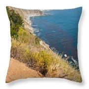 Along Big Sur Throw Pillow