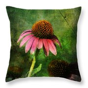 3 Amigos Echinacea Coneflower Grunge Art Throw Pillow