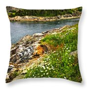 Atlantic Coast In Newfoundland Throw Pillow