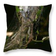 Bird-cherry Ermine Caterpillars Throw Pillow