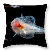 Blind Lobster Throw Pillow