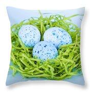 Blue Easter Eggs  Throw Pillow by Elena Elisseeva