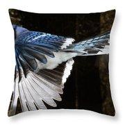 Blue Jay In Flight Throw Pillow