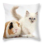 Blue-point Kitten And Guinea Pig Throw Pillow