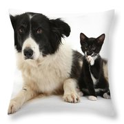 Border Collie And Tuxedo Kitten Throw Pillow