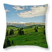 Bridger Mountain View Throw Pillow