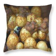 Bumblebee Nest Throw Pillow