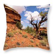 Canyonlands Needles District Throw Pillow