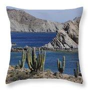 Cardon Pachycereus Pringlei Cacti Throw Pillow