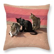 3 Cats Looking Pensive Throw Pillow