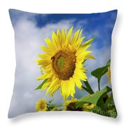 Close Up Of Sunflower Throw Pillow by Bernard Jaubert