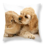 Cocker Spaniel And Rabbit Throw Pillow
