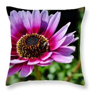 Colorful Flower Throw Pillow