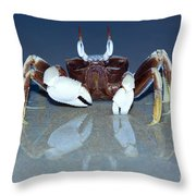Crab On The Tropical Beach Throw Pillow
