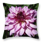 Dahlia Named Lauren Michelle Throw Pillow