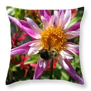 Dahlia Named Lorona Dawn Throw Pillow