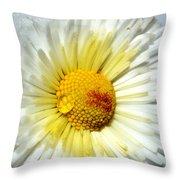 Daisy Flower Throw Pillow