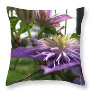 Double Clematis Named Crystal Fountain Throw Pillow