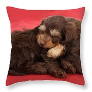 Doxie-doodle Puppies Throw Pillow