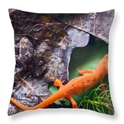 Easterm Newt Nnotophthalmus Viridescens 2 Throw Pillow