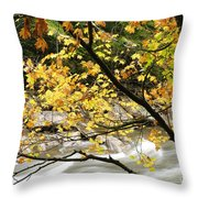 Fall Along Williams River Throw Pillow by Thomas R Fletcher