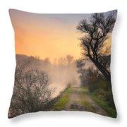 Foggy Road Throw Pillow