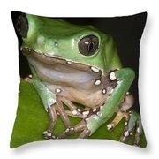 Giant Monkey Frog Throw Pillow