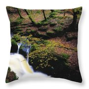 Glenmacnass Waterfall, Co Wicklow Throw Pillow