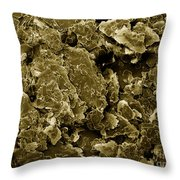 Heroin, Sem Throw Pillow by Ted Kinsman