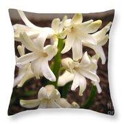 Hyacinth Named Aiolos Throw Pillow