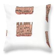 Illustration Of Epithelium Types Throw Pillow