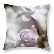 Lilac Named Beauty Of Moscow Throw Pillow