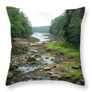 Low Tide In Maine Part Of A Series Throw Pillow