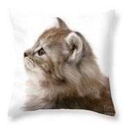 Maine Coon Kitten Throw Pillow
