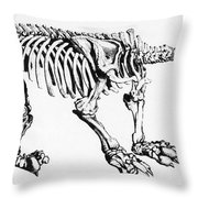 Megatherium, Extinct Ground Sloth Throw Pillow