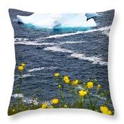 Melting Iceberg Throw Pillow