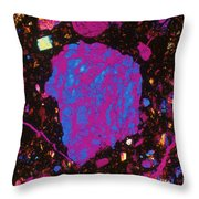 Moon Rock, Transmitted Light Micrograph Throw Pillow by Michael W. Davidson - FSU