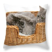 Mother Cat With Kitten Throw Pillow