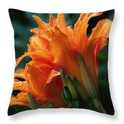 Orange Daylily Throw Pillow
