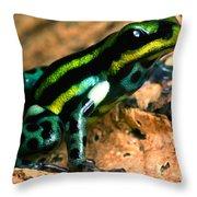 Pasco Poison Frog Throw Pillow